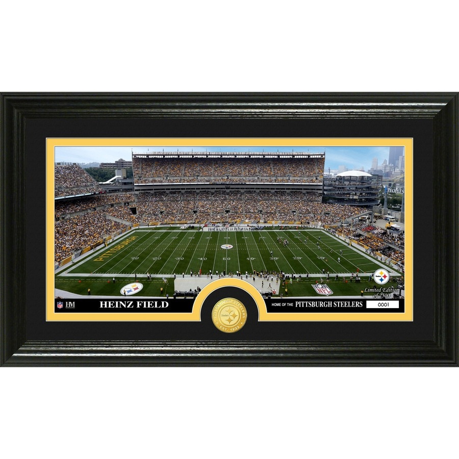 The Highland Mint 20-in W x 12-in H Pittsburgh Steelers Stadium Bronze Coin Panoramic Photo Mint Wall Art