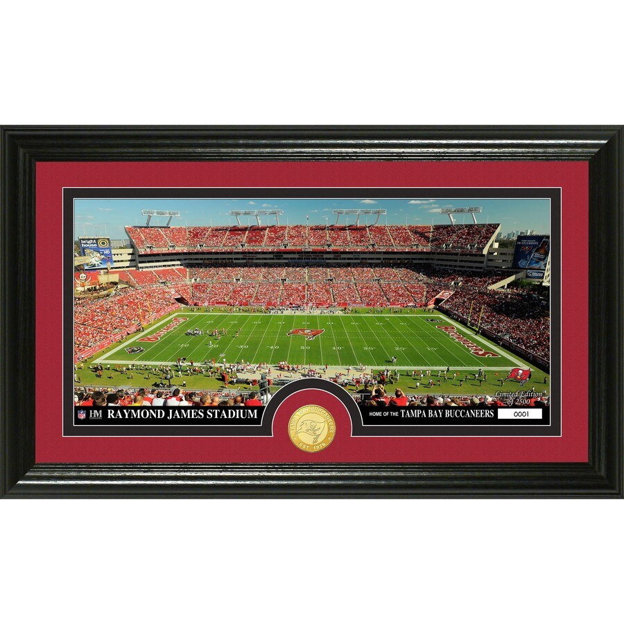 The Highland Mint 20-in W x 12-in H Tampa Bay Buccaneers Stadium Bronze Coin Panoramic Photo Mint Wall Art