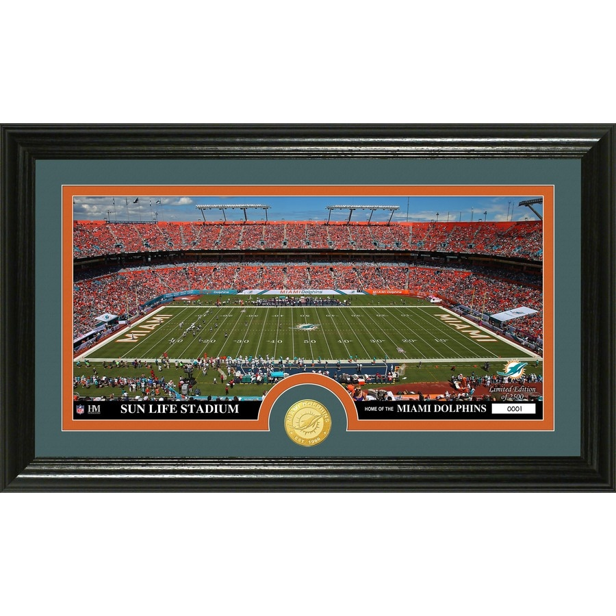 The Highland Mint 20-in W x 12-in H Miami Dolphins Stadium Bronze Coin Panoramic Photo Mint Wall Art