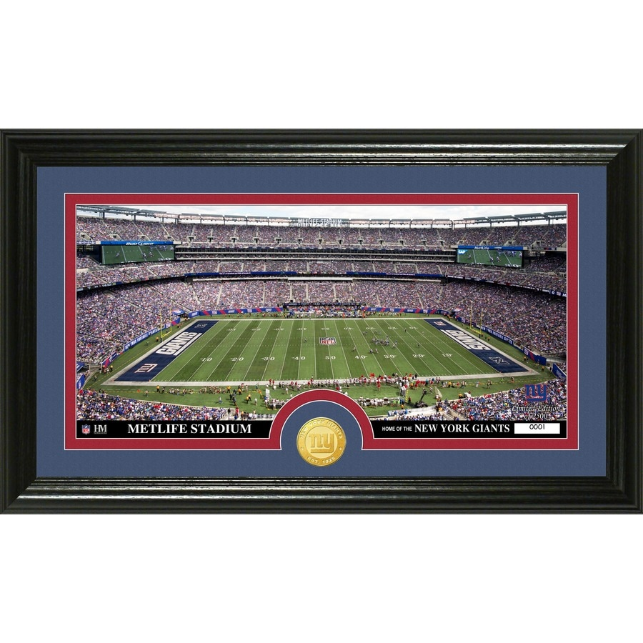 The Highland Mint 20-in W x 12-in H New York Giants Stadium Bronze Coin Panoramic Photo Mint Wall Art