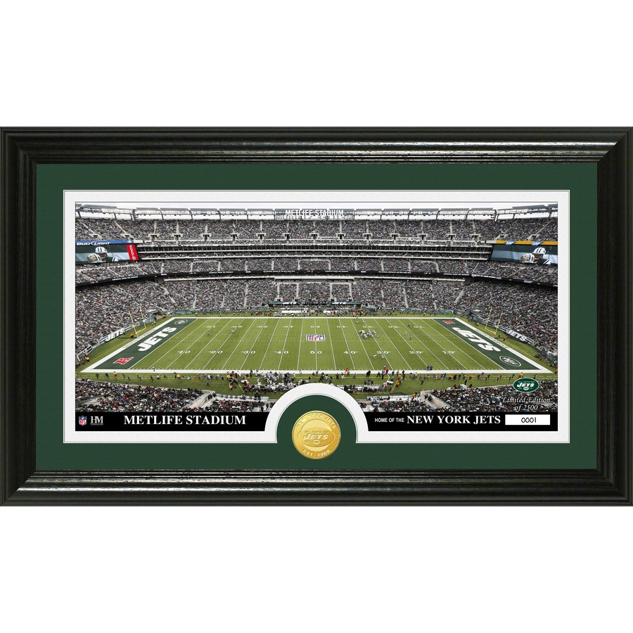 The Highland Mint 20-in W x 12-in H New York Jets Stadium Bronze Coin Panoramic Photo Mint Wall Art