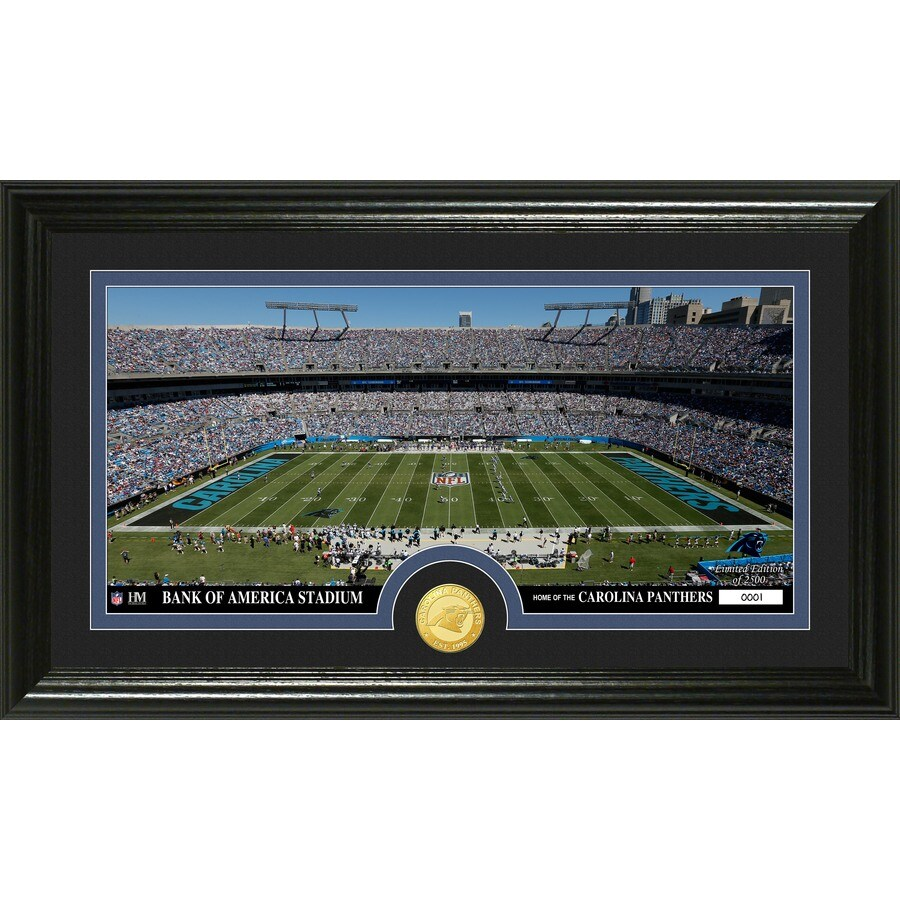 The Highland Mint 20-in W x 12-in H Carolina Panthers Stadium Bronze Coin Panoramic Photo Mint Limited Editions