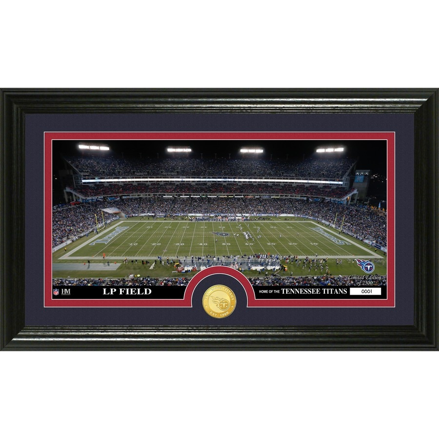 The Highland Mint 20-in W x 12-in H Tennessee Titans Stadium Bronze Coin Panoramic Photo Mint Wall Art
