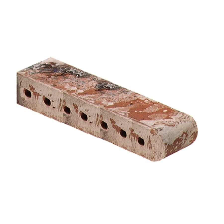 Castaic Brick (Common: 3.5-in x 2.19-in x 12-in; Actual: 3.5-in x 2.19-in x 11.5-in) Bullnose Cored Bullnose Cored Concrete Block