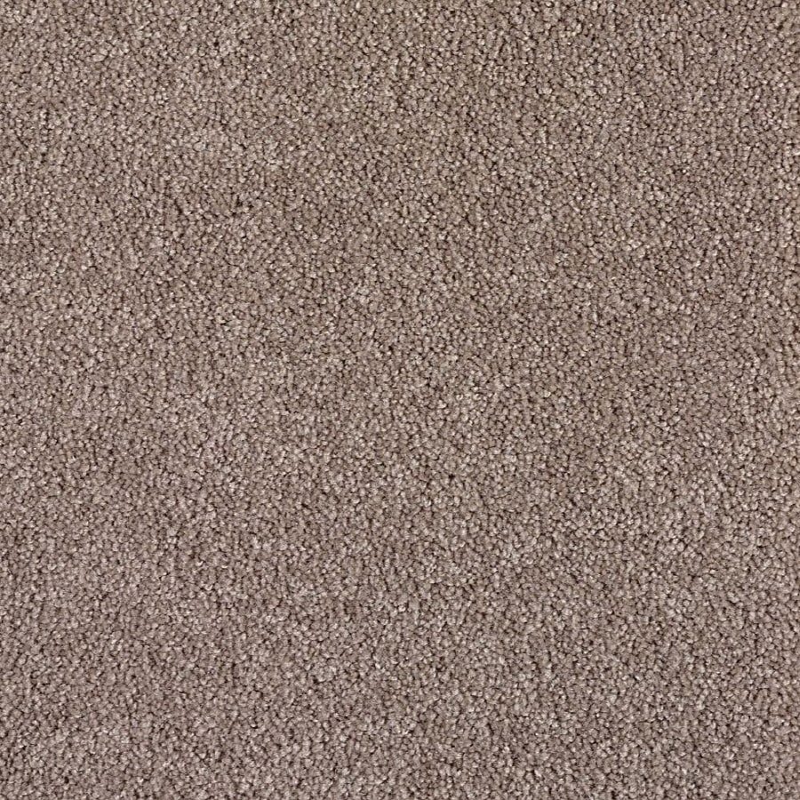 Green Living Fossil Textured Indoor Carpet