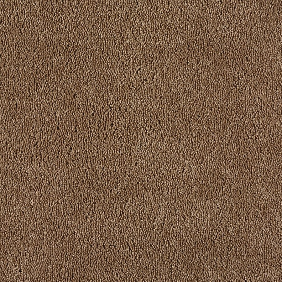 Green Living Gleaming Bronze Textured Indoor Carpet