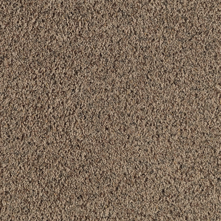 Feature Buy 12-ft W x Cut-to-Length Terra Cotta Textured Interior Carpet