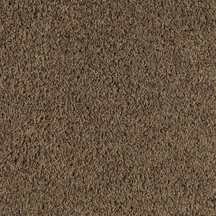 Feature Buy 12-ft W x Cut-to-Length Adirondack Textured Interior Carpet