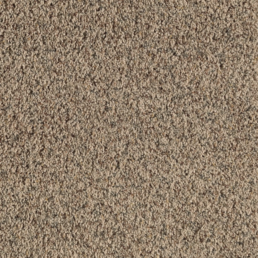 Feature Buy Indian Buff Textured Interior Carpet