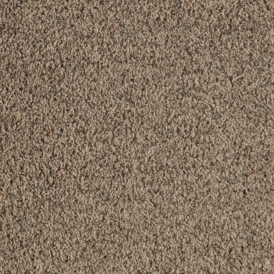 Feature Buy 12-ft W x Cut-to-Length Safari Tan Textured Interior Carpet