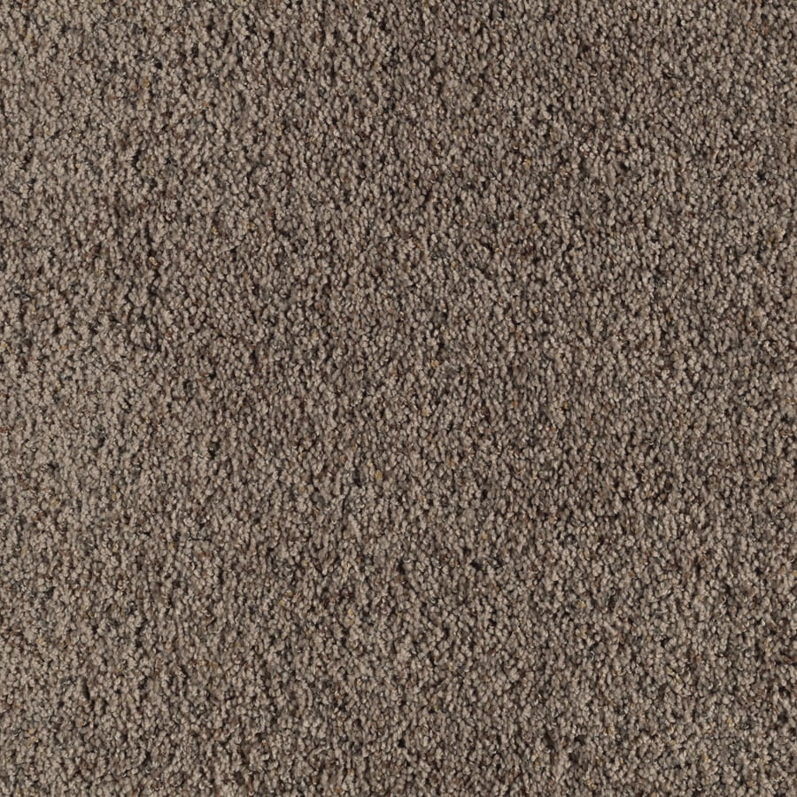 Feature Buy 12-ft W x Cut-to-Length Mocha Lite Textured Interior Carpet