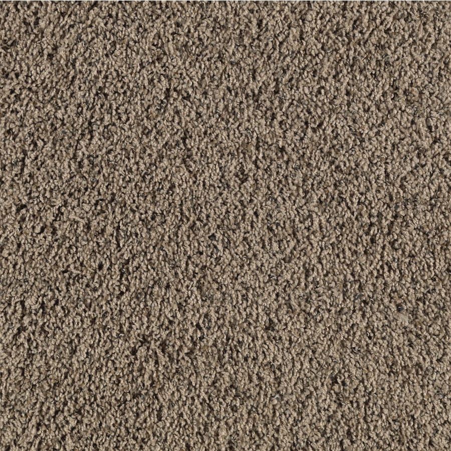 Shop smartstrand bartley mellow taupe frieze indoor carpet for Taupe color carpet