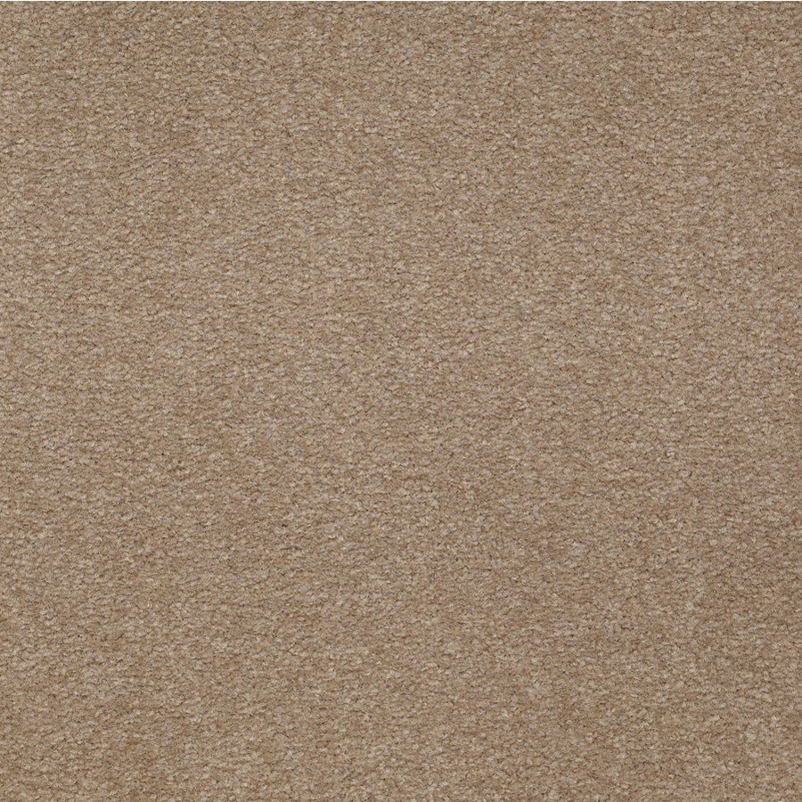 Lyra III Wild Frontier Textured Indoor Carpet