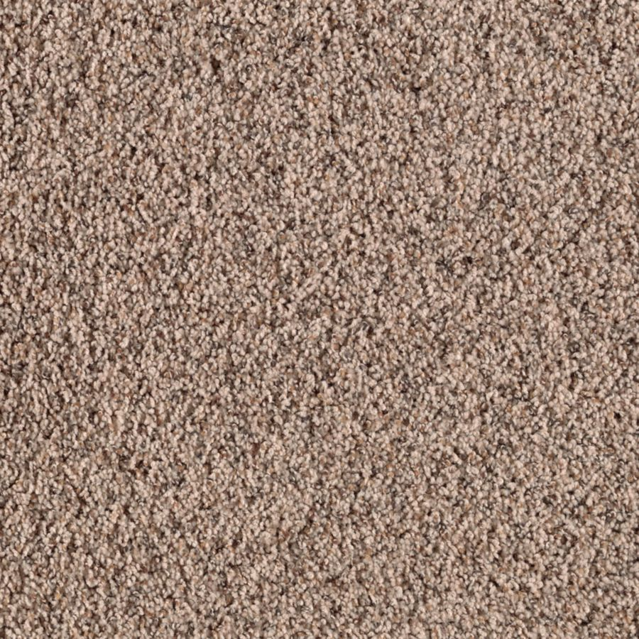 Stainmaster Essentials Stock Carpet 12 Ft W X Cut To Length Rosewood