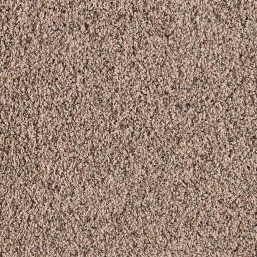 Mohawk Stainmaster Carpet Ideas