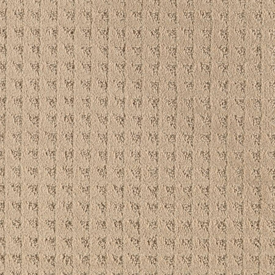 Mohawk Cornerstone Collection Highstyle Textured Indoor Carpet
