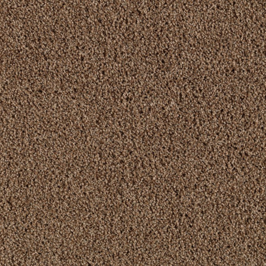 Mohawk Cornerstone Collection Brunette Textured Indoor Carpet