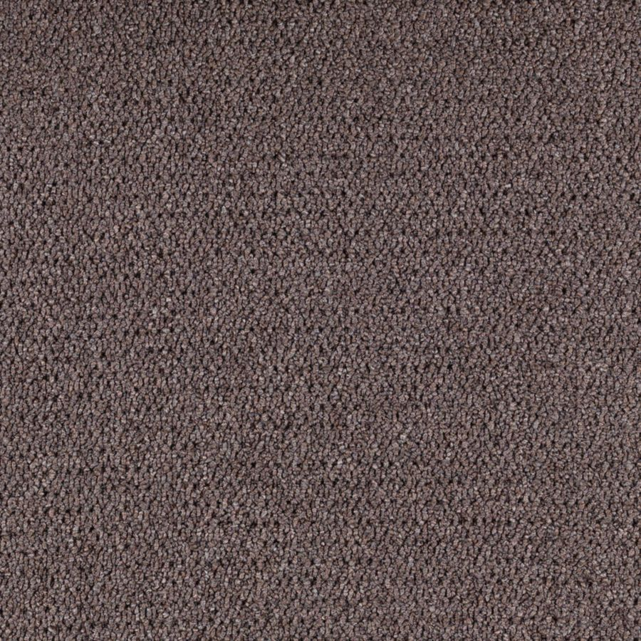 Mohawk Interpret Penny Textured Interior Carpet