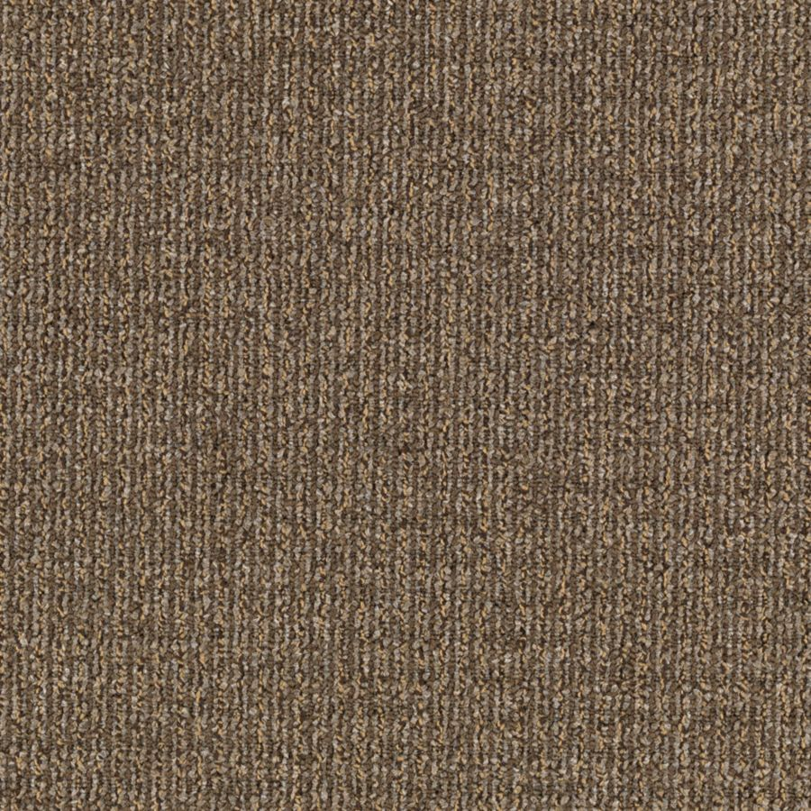 Mohawk Interpret 12-ft W Vanilla Textured Interior Carpet