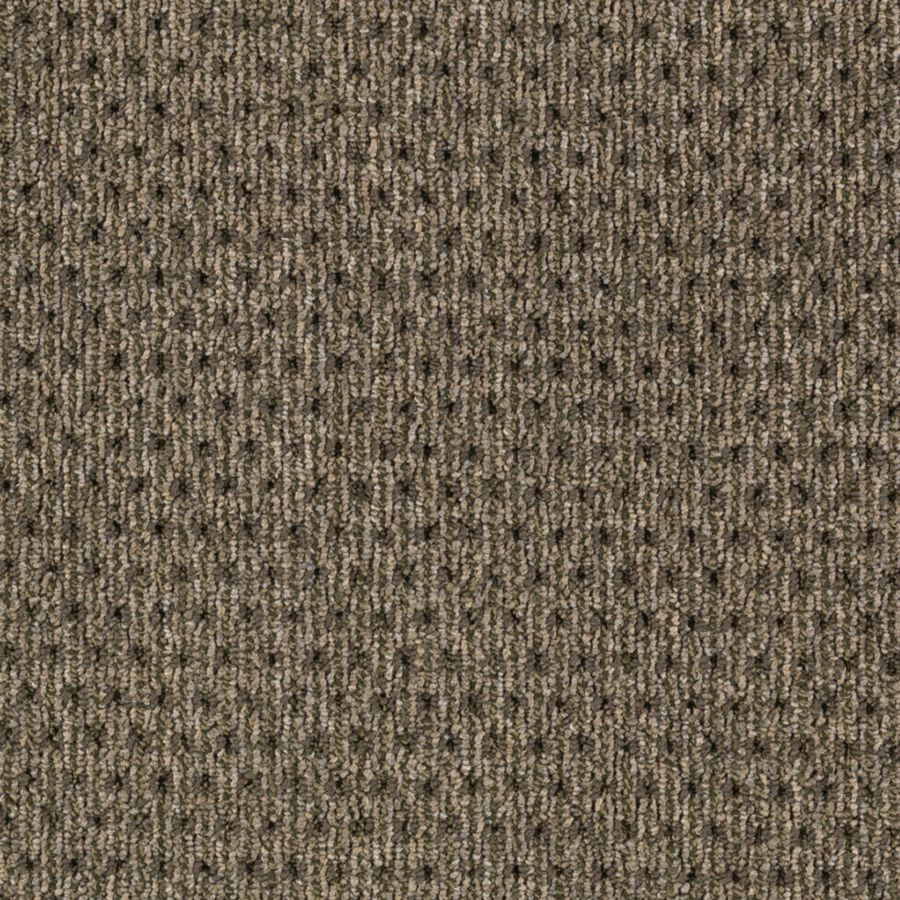 Mohawk Interpret 12-ft W x Cut-to-Length Sage Textured Interior Carpet