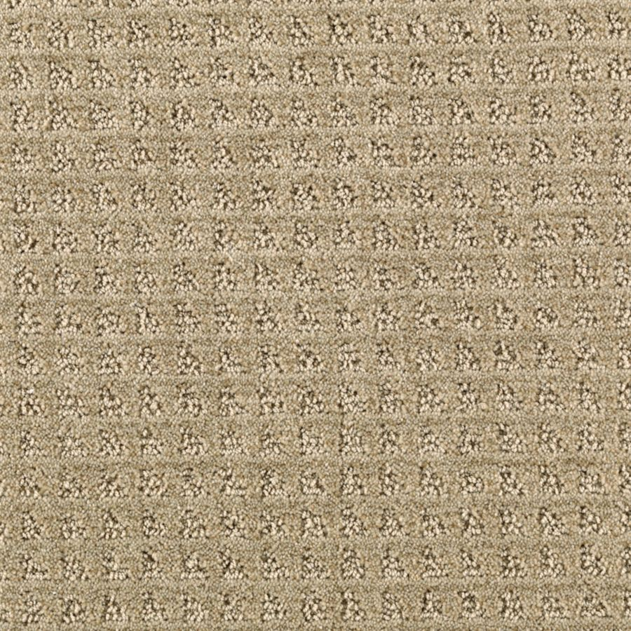 Mohawk Essentials Designboro Willow Textured Interior Carpet