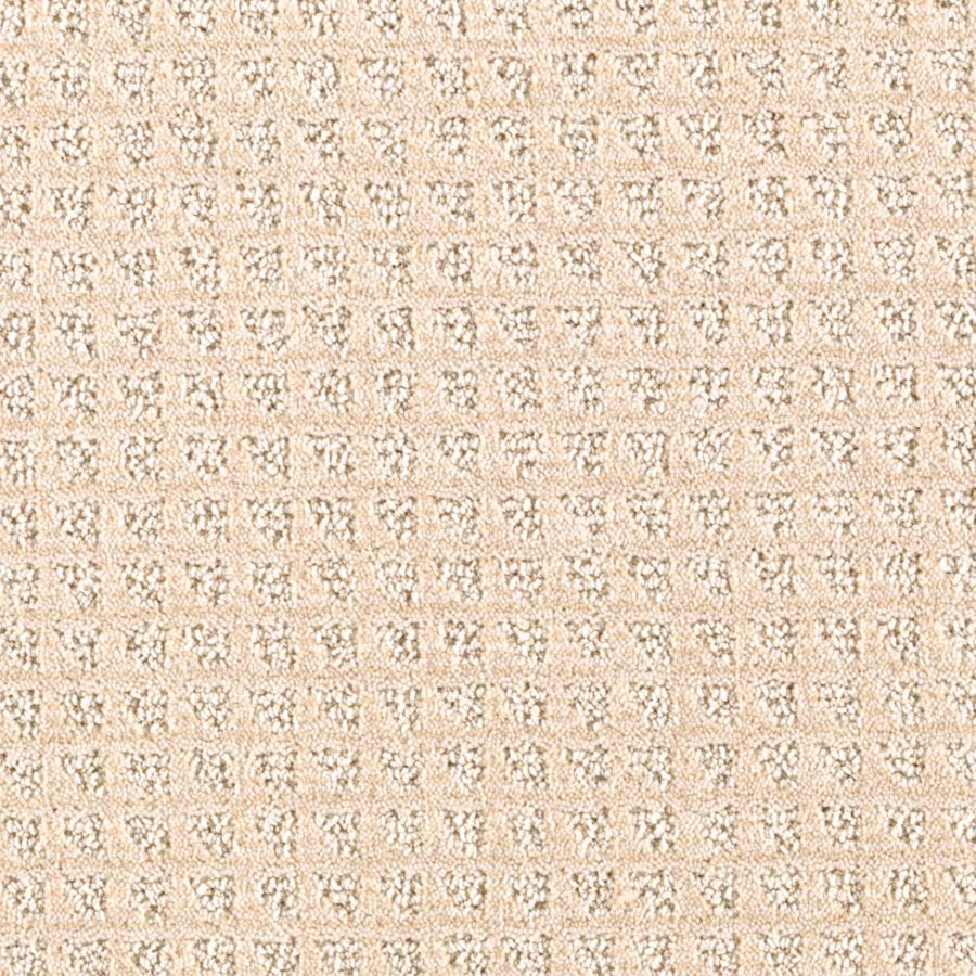 Mohawk Essentials Designboro 12-ft W x Cut-to-Length Beach Sunset Textured Interior Carpet