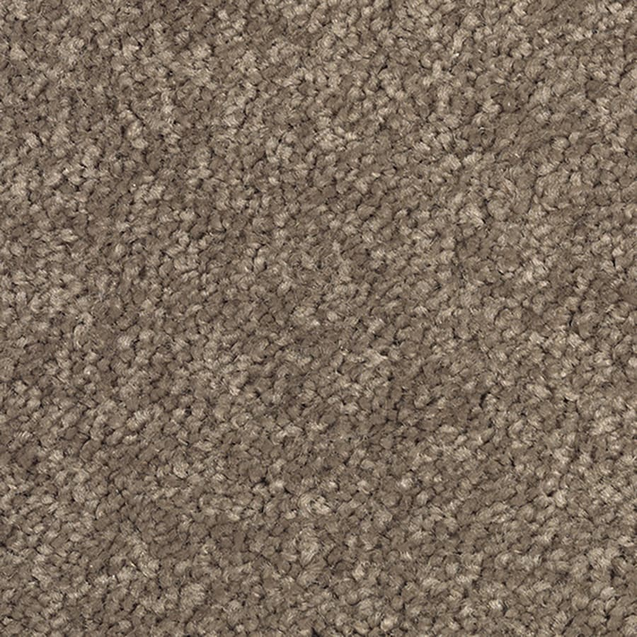 Mohawk Herb Sachet Textured Interior Carpet