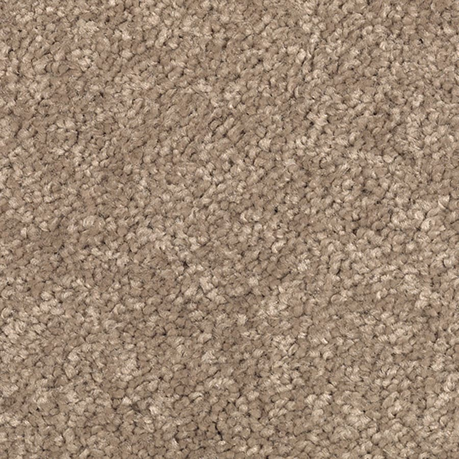 Mohawk Bitter Brown Textured Interior Carpet