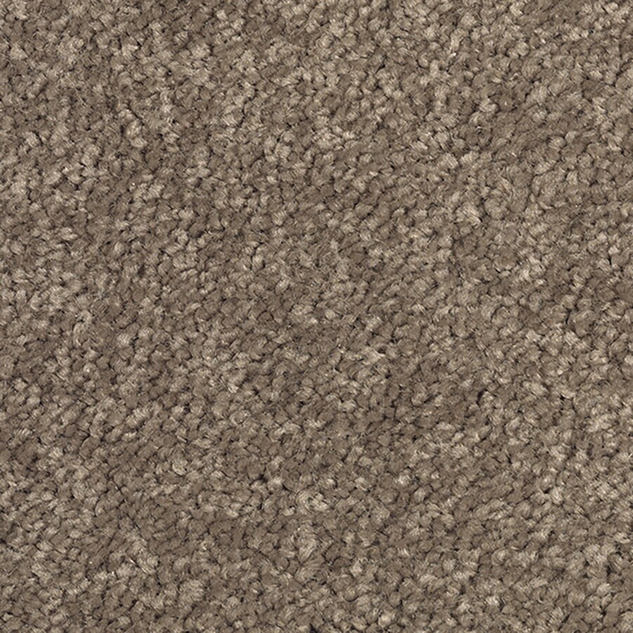 Mohawk Feature Buy 12-ft W x Cut-to-Length Herb Sachet Textured Interior Carpet