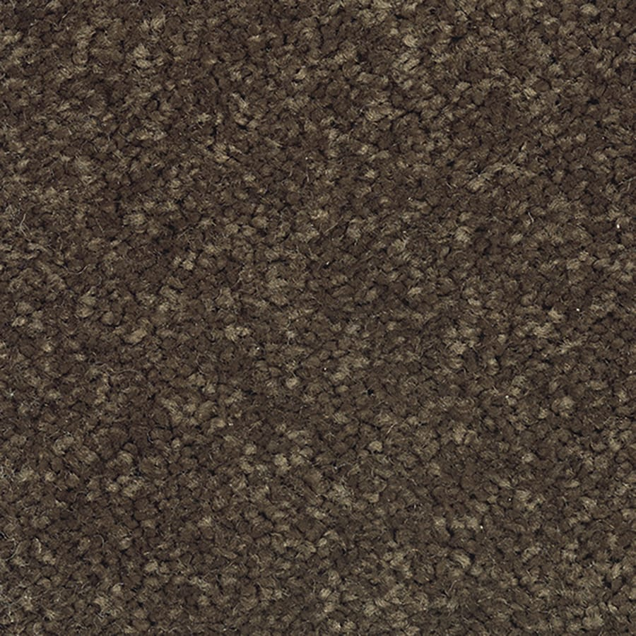 Mohawk Feature Buy Cinnamon Toast Textured Indoor Carpet