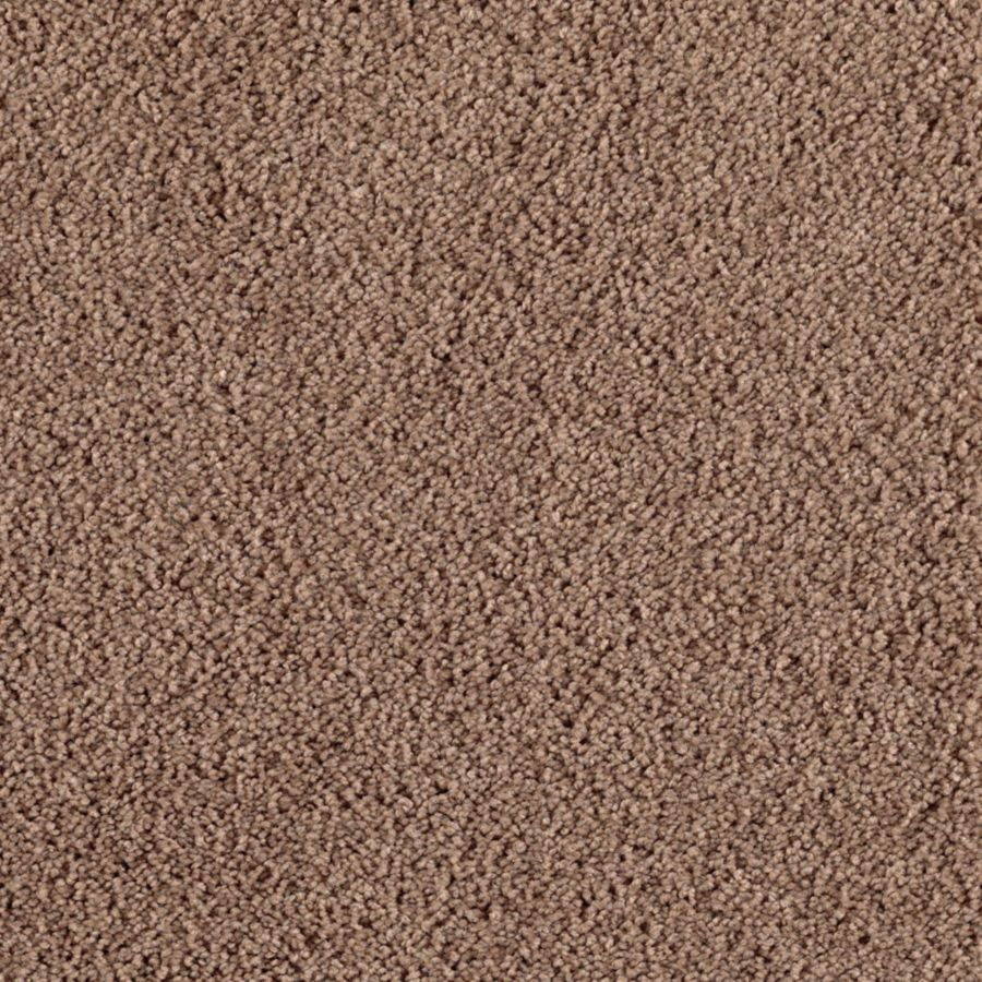Mohawk Feature Buy 12-ft W x Cut-to-Length Cola Textured Interior Carpet