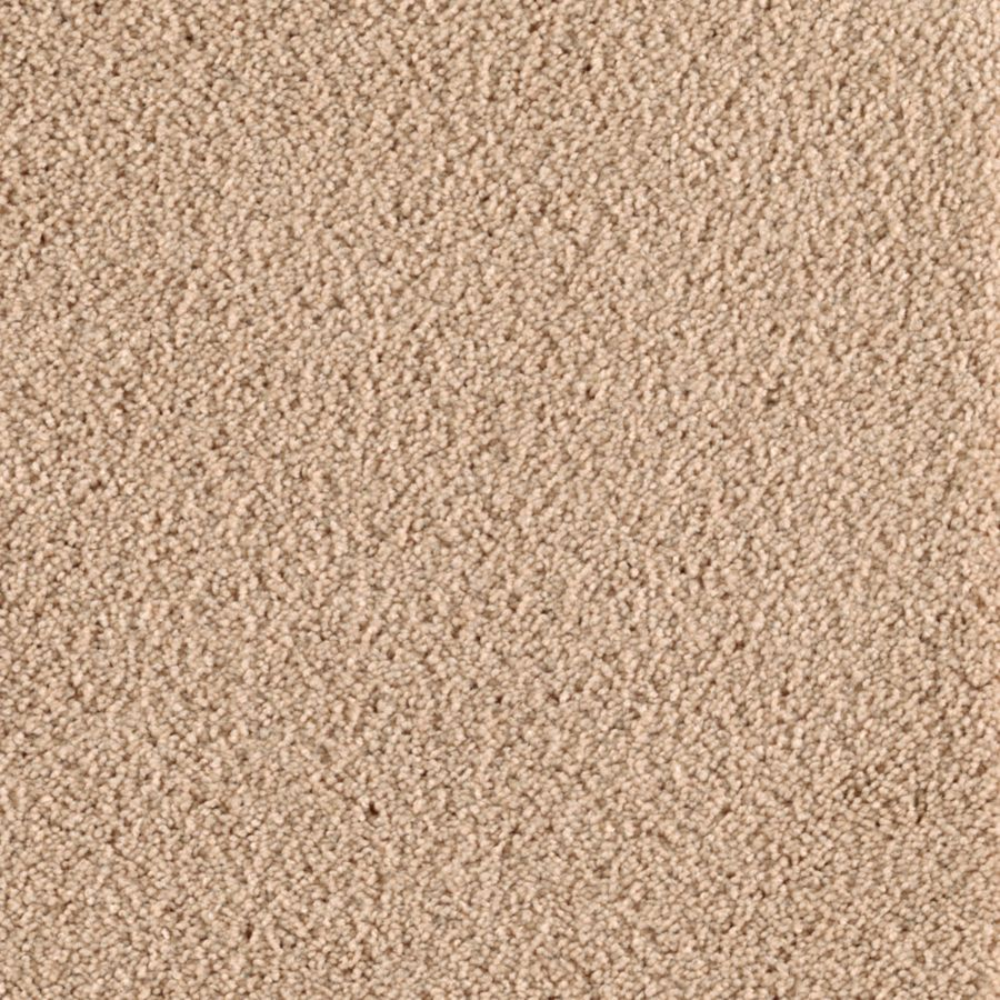 Mohawk Feature Buy Foundation Textured Indoor Carpet
