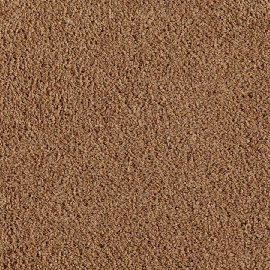 Mohawk Feature Buy Creekbed Textured Indoor Carpet