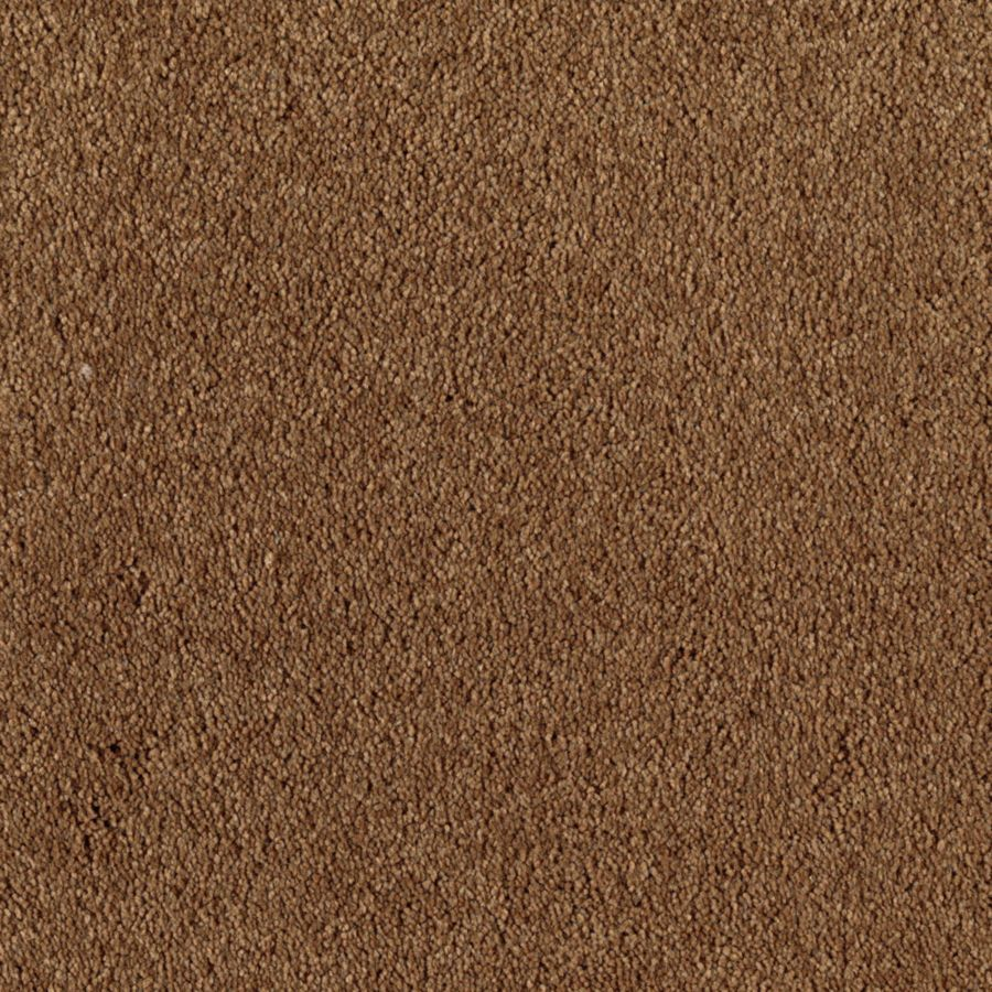 Mohawk Essentials Dream Big I 12-ft W x Cut-to-Length Kodiak Textured Interior Carpet