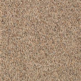 Mohawk Express Install 12 Ft Textured Interior Carpet