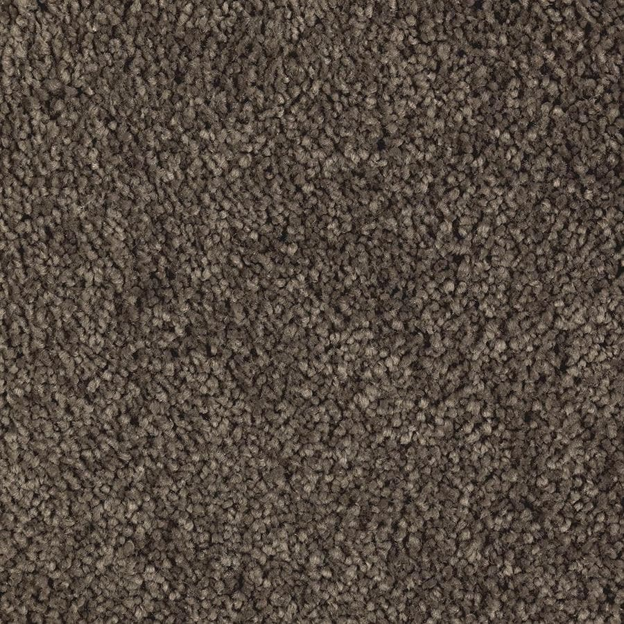Mohawk Essentials Decor Fashion Swiss Chocolate Textured Indoor Carpet