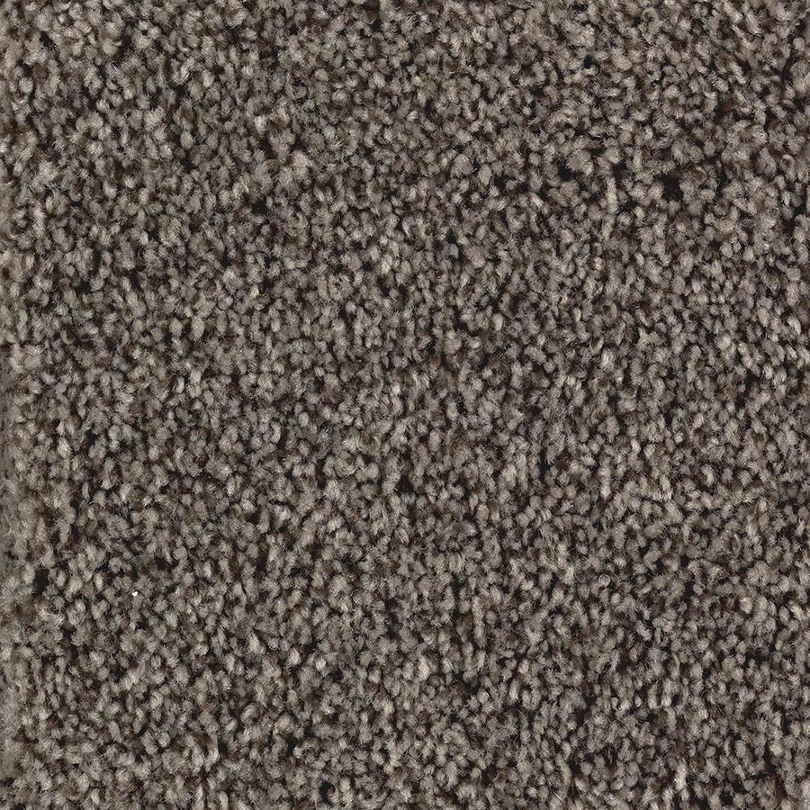 Mohawk Essentials Tonal Look Swiss Chocolate Textured Indoor Carpet