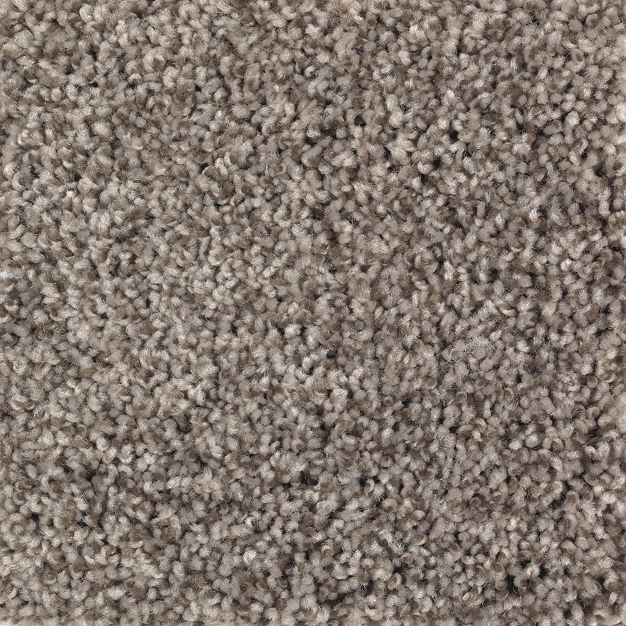 Mohawk Essentials Cornerstone 12-ft W x Cut-to-Length Chocolate Swirl Textured Interior Carpet