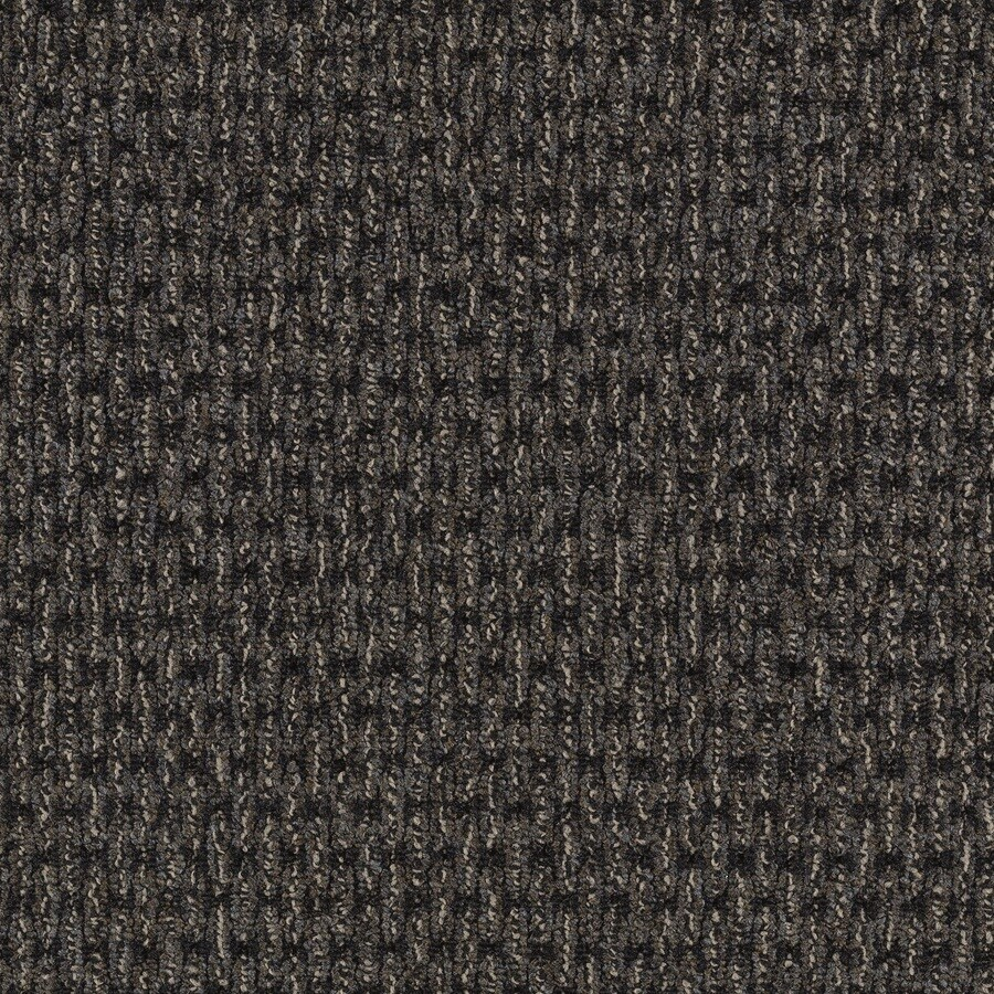 Mohawk Home and Office 12-ft W Midnight Plush Interior Carpet