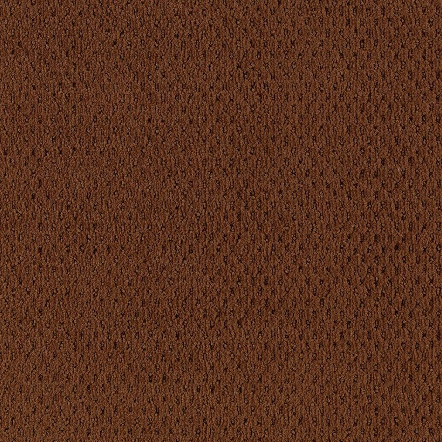 Mohawk Home and Office 12-ft W x Cut-to-Length TAWNY Pattern Interior Carpet