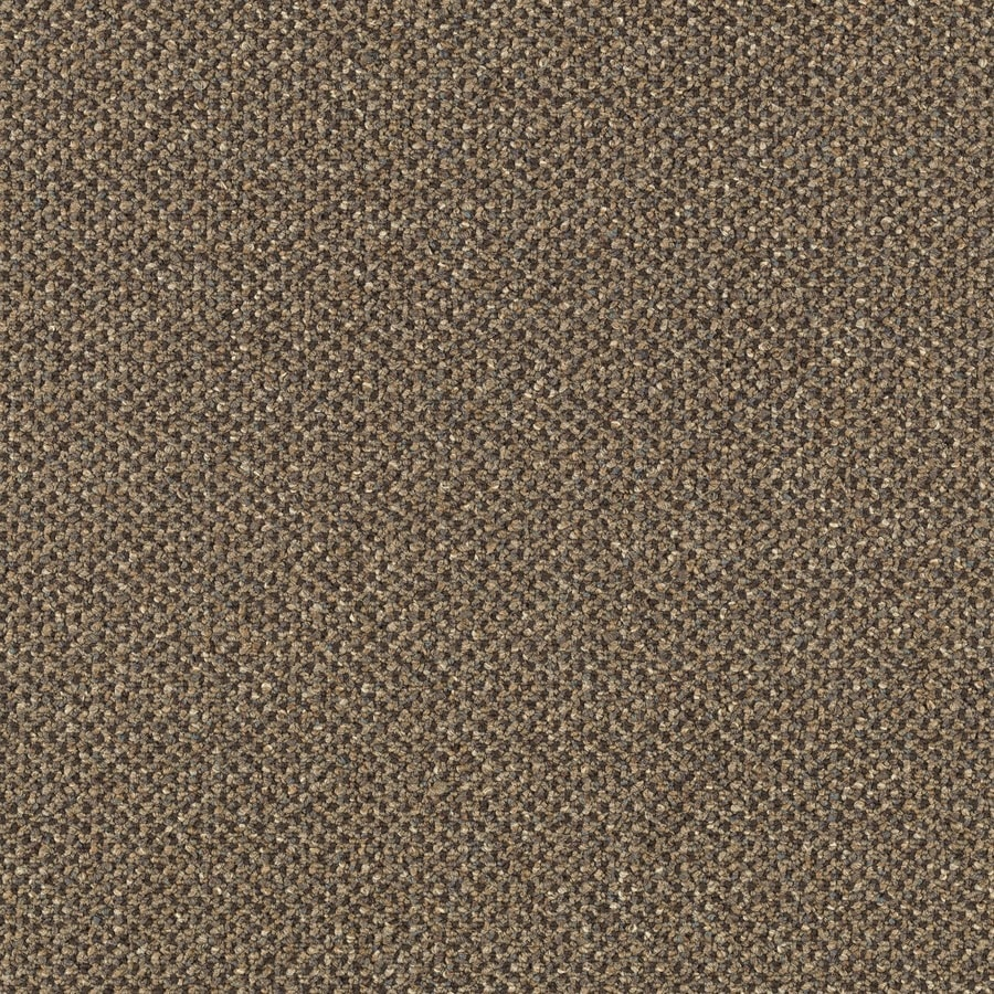 Mohawk Lowe's Home and Office Illustrious Textured Interior Carpet