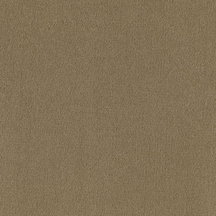 Mohawk Home and Office 12-ft W x Cut-to-Length Oregano Plush Interior Carpet