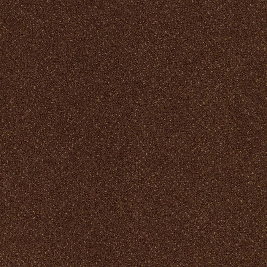 Mohawk Lowe's Home and Office Tawny Pattern Interior Carpet