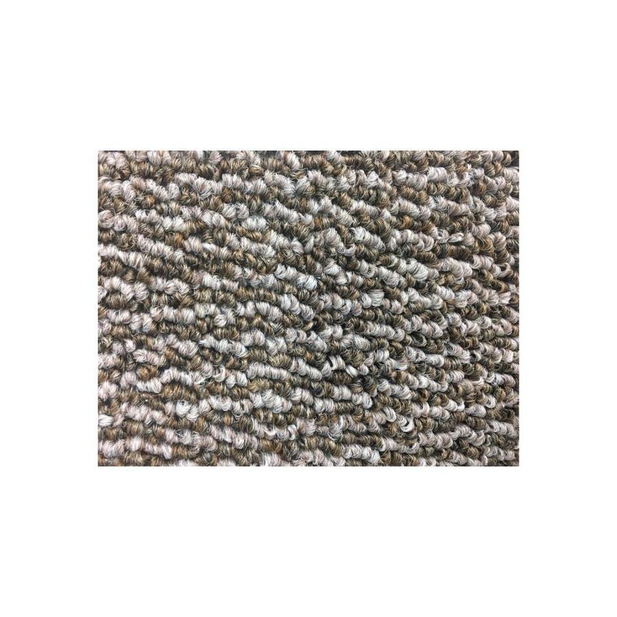 Mohawk Sonic Buff Berber/Loop Interior Carpet
