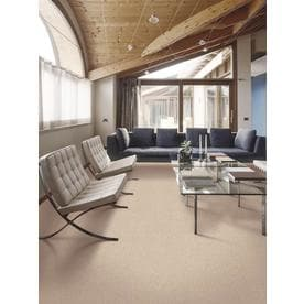 Mohawk Stock Carpet 12 Ft Textured Interior Carpet
