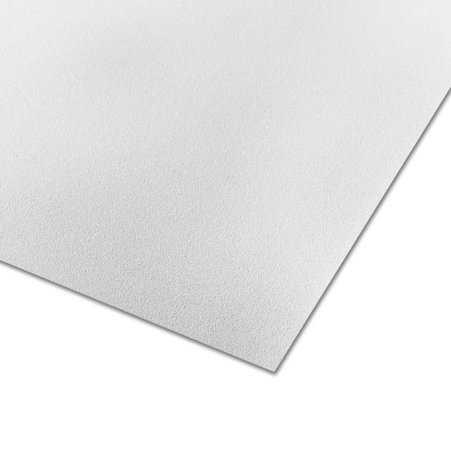 Parkland Plastics 48-in x 8-ft Embossed White Matte Plastic Wall Panel