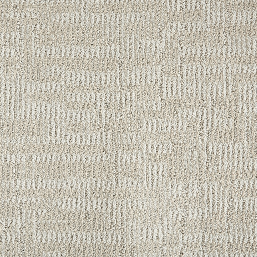 STAINMASTER PetProtect Cashmere 84403 Pattern Indoor Carpet