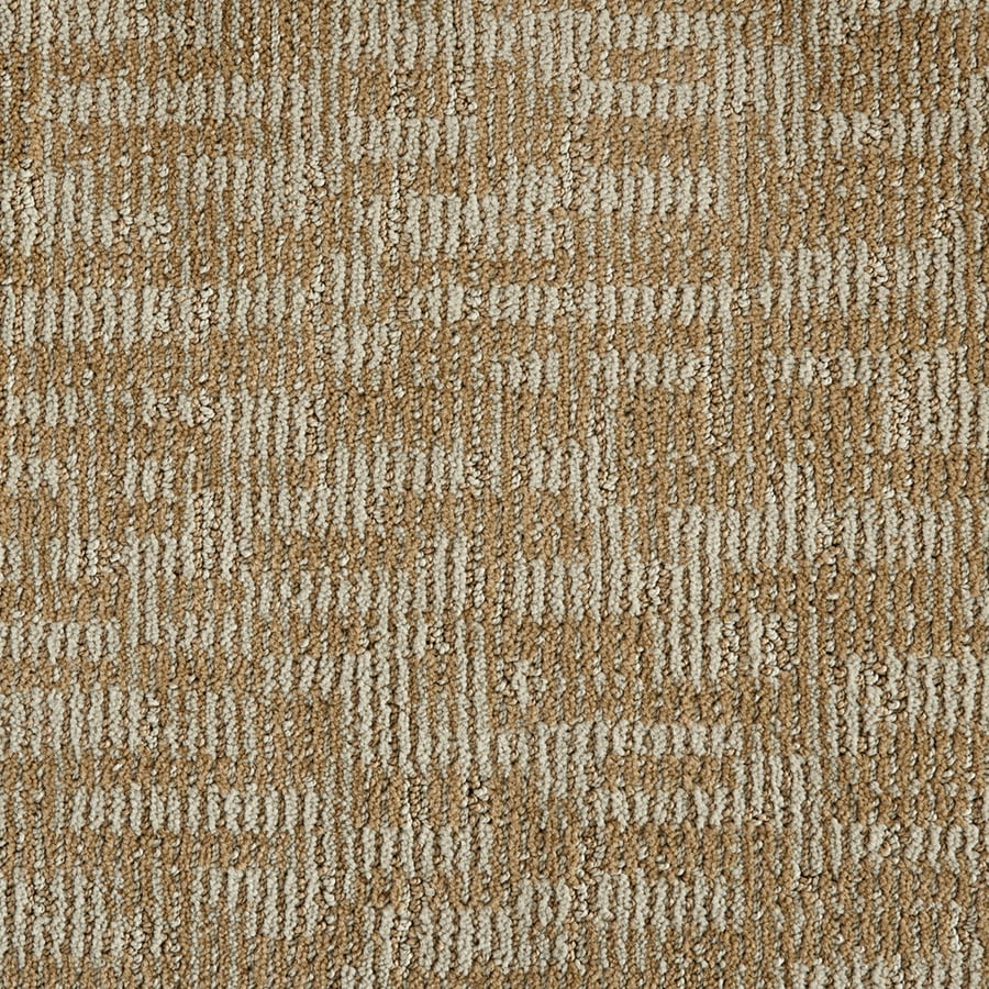 STAINMASTER PetProtect 12-ft W x Cut-to-Length Clay 84405 Pattern Interior Carpet
