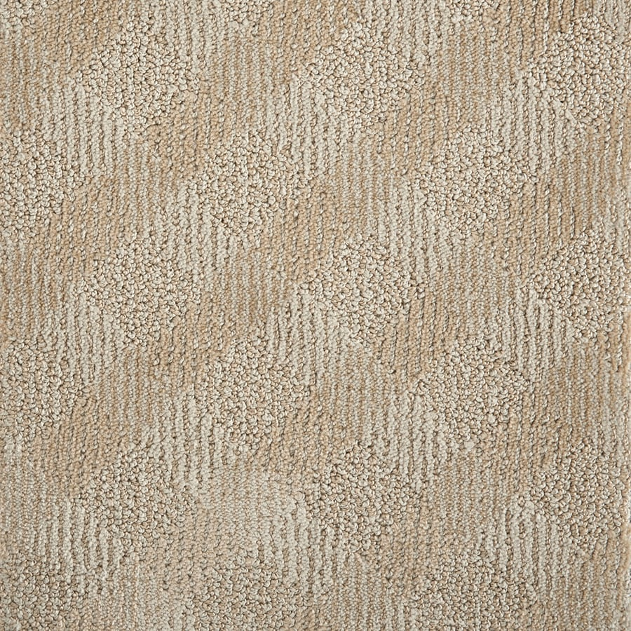 STAINMASTER PetProtect Clay Pattern Interior Carpet