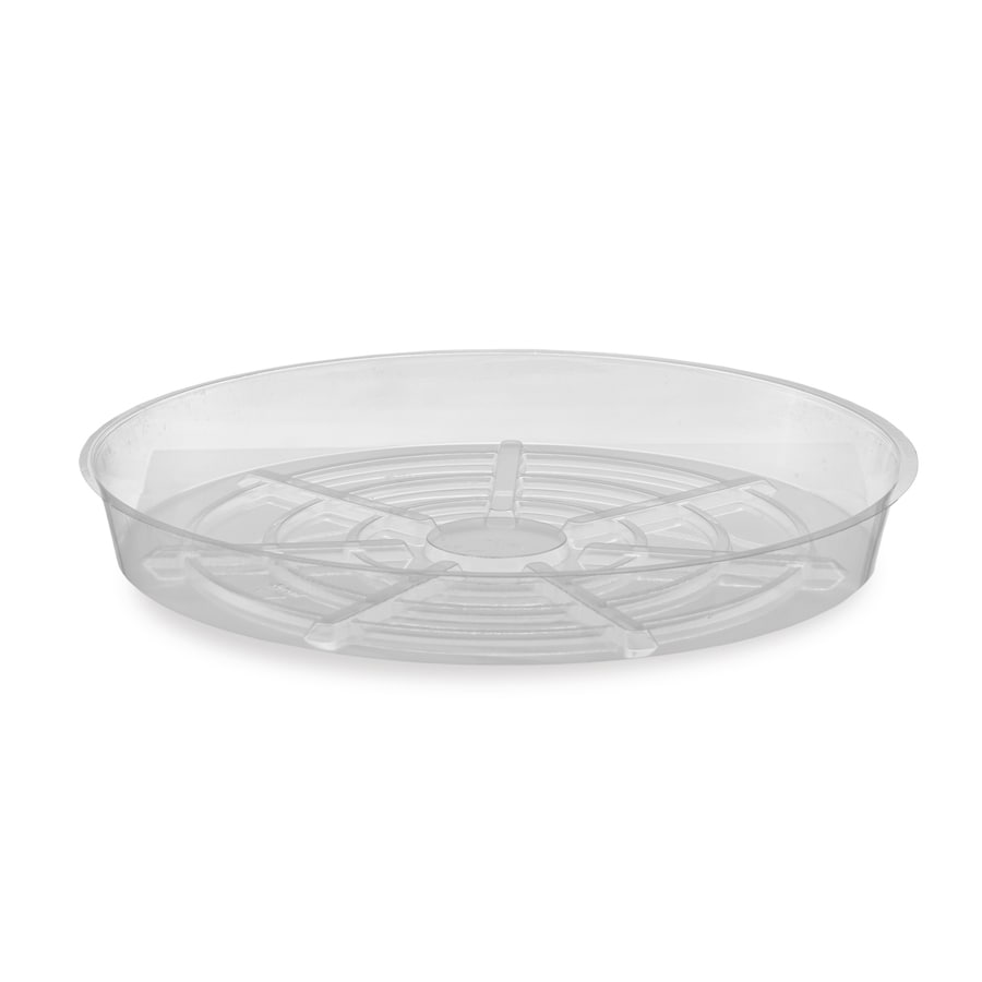 dotchi 6-in Clear Plastic Plant Saucer